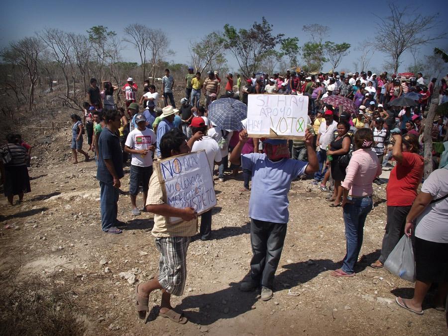 Exposici n pict rica pago en especie en la galer a for Alberca 20 de noviembre campeche