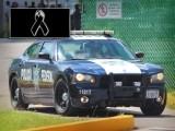 FALLECE POLICÍA FEDERAL; AUTO EN EL QUE VIAJABA SE IMPACTA CONTRA UNA VACA