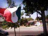 VIDEO: MUJER LE RECLAMA A HISPANA EN EU POR BANDERA DE MÉXICO EN SU PATIO