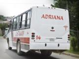 POR MANEJAR Y COBRAR, CHOFER DE URBANO IMPACTA AUTOMÓVIL