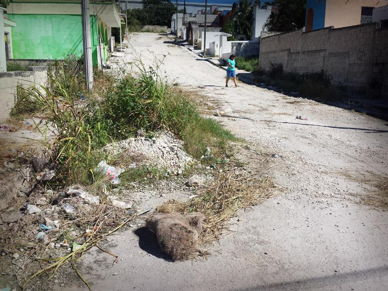 vecinos-calle-ramon-espinola-110022