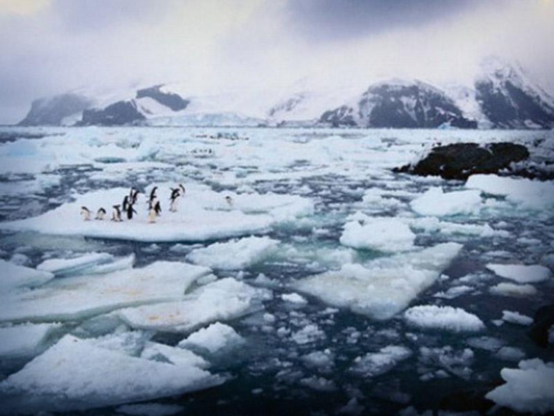 Resultado de imagen para imagenes antartica derrite