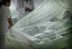 dengue-mex-65436