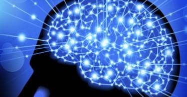 cerebro-medico-65432