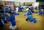 judo-panamerica-64364