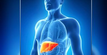 muerte-hepatitis-65436